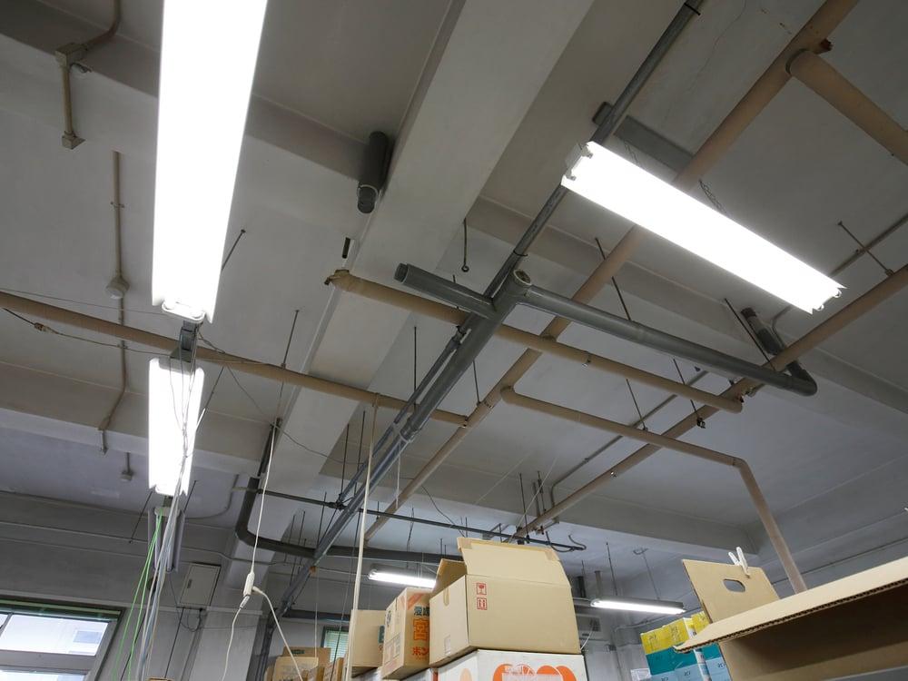 金谷茶業研究拠点の建物の天井