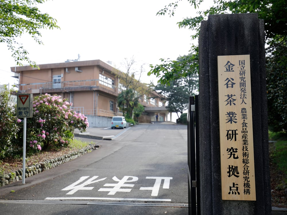 金谷茶業研究拠点の入口