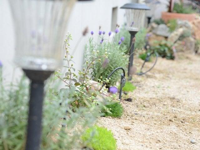 庭の代表写真