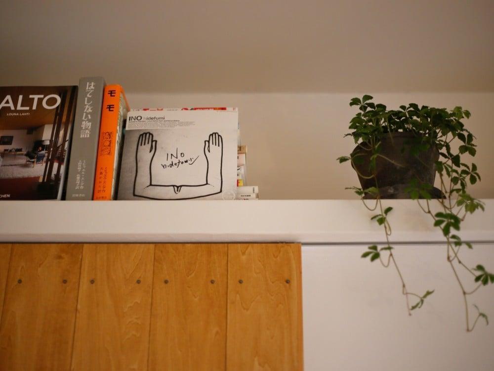 棚に飾った観葉植物