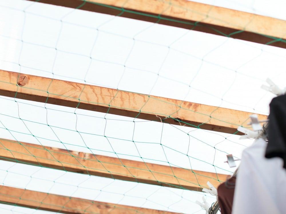 天井にも張り巡らされたネット