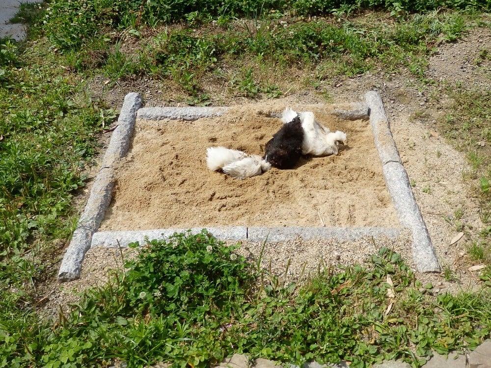 円柱状の御影石を砂場の枠として利用