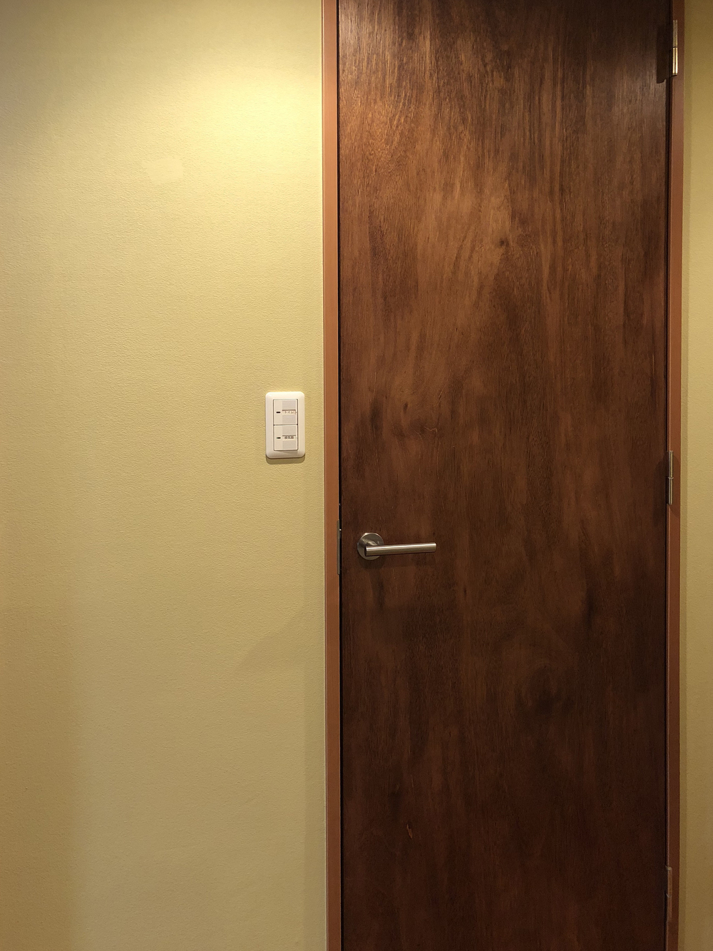 ドア枠も塗装する予定。
