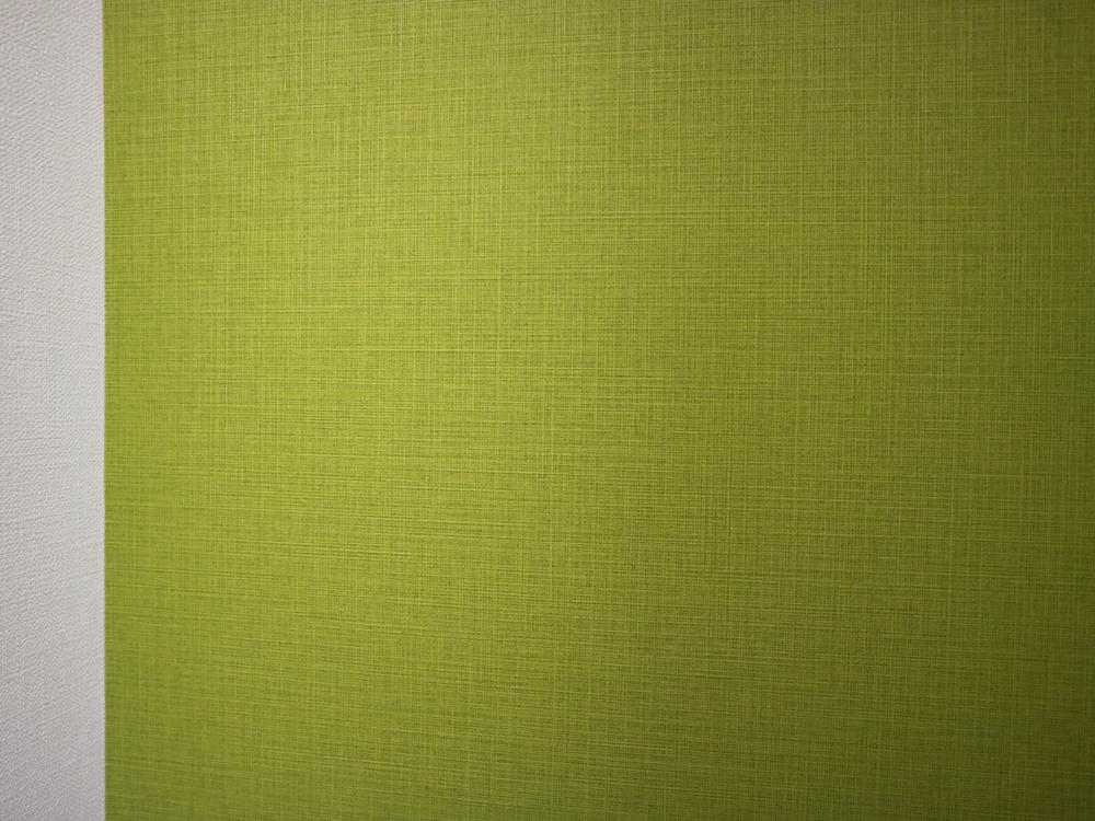 サンゲツの壁紙・TH8799。織物のような模様が入っています